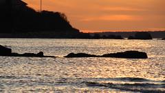 IMG_5522 (Martina Mastromonaco) Tags: beach vineyard martha s subset