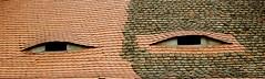 For you eyes only (offroadsound) Tags: roof eyes augen dach gauben luken dachgauben fensterluken