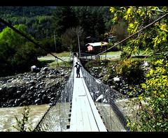 14. Standing on the bridge (Por Jose y Jonathan) Tags: chile park bridge naturaleza flores nature río river puente árboles national hanging nacional reserva colgante