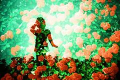 rose garden (Hodaka Yamamoto) Tags: park flower girl silhouette statue garden doubleexposure double multipleexposure doubles