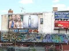Cope2 Riot Muse (soulroach) Tags: nyc ny brooklyn graffiti riot muse fc rsa kd tnb cope2 wallnuts