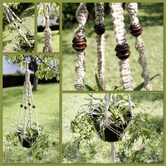 Steel Magnolia- Handmade Natural Hemp Macrame Plant Hanger (Macramaking- Natural Macrame Plant Hangers) Tags: brown plant green coffee hippies forest garden happy beads basket natural herbs gardening handmade chocolate oneofakind decorative character cottage adorable peaceful ivy funky gift hanging americana espresso fengshui organic chic cheerful boho planter frontporch groovy hang caff bohemian homedecor hanger lawnornament macrame fibers hemp spiderplant madeinusa ecofriendly accessory conversationpiece hangingbasket hangingbaskets bohochic containergardening macram planthanger steelmagnolia airplaneplant planthangers southerncharm hangingplanter macramebeads decorativeknotting naturalhemp macrameplanthanger macramakin macramaking httpwwwetsycomshopmacramaking macramecord macrammacramaking macracord macrametechnique chinesecrownknots macramehangingbasket macrameweaving macramelove