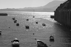 Chungungo 06 (fmateluna_90) Tags: chile costa muro blanco sol puerto muelle coquimbo mar barco y negro pueblo ciudad playa paisaje motor region pesca acantilado horizonte lancha oceano bote pescadores pescar costera chungungo