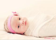 Miss S. (II) (dana.nikolova (india-eve)) Tags: baby cute girl beautiful closeup canon 50mm model child sweet gorgeous adorable posing naturallight newborn milky 6d babyportrait