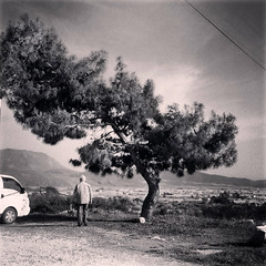 Cool tree (VillaRhapsody) Tags: man tree standing person ancient roman historical behind lycian preroman xantos challengeyouwinner likia knk