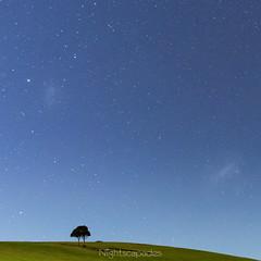 Moonlit Magellanic Meadow (nightscapades) Tags: sky moon night stars au australia astrophotography newsouthwales moonlight astronomy kiama nightscapes nowra milkyway jamberoo galacticcore
