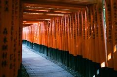 Kyoto, Japan / AGFA VISTAPlus / Nikon FM2 (Toomore) Tags: japan 35mm nikon kyoto iso400 nikkor agfa fm2 vistaplus