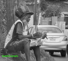 All the News.... (Halcon122) Tags: street bw reading candid newspapers streetphotography kingston ja rasta olympusem5markii