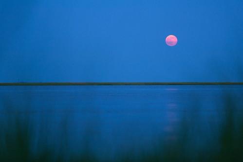 Mullica Moonrise