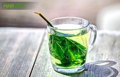 Yeil ayn Zararlar ve Yan Etkileri (Yeil aylar) Tags: green tea greentea yeil yeilay yeilaylar