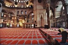 Salat - Oracin (Luis Bermejo Espin) Tags: travel islam arabia religin mahoma ramadn muslins arabes corn musulmanes islamismo mezquitas mundoarabe religionesdelmundo luisbermejoespn mundoislmico