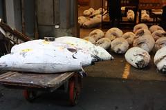 IMG_5894 (tsaaby) Tags: japan fishmarket fisk fiskemarked tmfstudietur