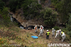 Long Way Down To Oil Spill (Greenpeace USA 2016) Tags: oil spill pipeline fossilfuel ventura california pollution cleanup crude ca usa