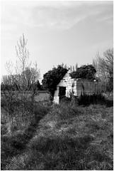 Broken House (bong.13) Tags: blackandwhite france nature les noiretblanc pierre ruine provence avignon villeneuve gard