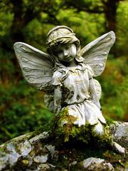 sculpture green abandoned girl stone angel moss wings dress mygearandme