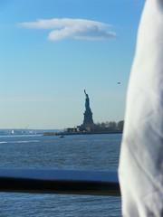 New York(378)