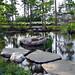 Slater Forest Pond