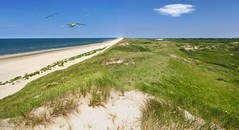 Tranquil undulating sands of the Dutch coastal  dunes (Bn) Tags: blue sea sky cloud holland green beach nature water netherlands beauty dutch grass strand walking landscape geotagged spring sand day wind hiking dunes north noordzee natura zee clear coastal strip coastline protection tranquil castricum seagul seaguls noord undulating kust wijkaanzee bakkum sheltered zeemeeuw noordhollands duinreservaat bakkumaanzee geo:lon=4601297 geo:lat=52536795