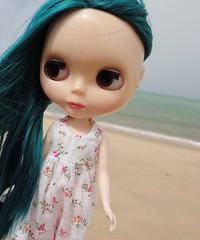 O mar de Sophie