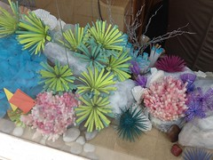 XV - I must go down to the sea again... (emilyluciedesigns) Tags: window coral display handmade pebbles anemones windowdetail seaanemone seaurchin
