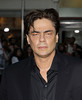 Benicio Del Toro at the premiere of 'Savages' at Westwood Village Los Angeles, California