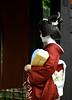 Mameharu (Red Cherry Tree) Tags: japan kyoto geisha gion mameharu