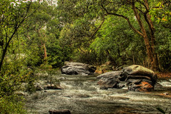 Nature at its best (Navaneeth K N) Tags: india nature forest landscape waterfall rocks asia karnataka coorg madikeri kodagu nisargadhama