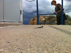 Jessica and the lizard