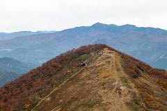 IMG_8141 (Amad) Tags: blue autumn brown mountain fall japan mount gunma   canon30d     mounttanigawa