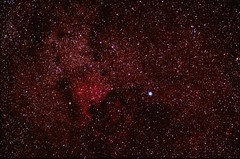 """Cygnus by Linton Guise • <a style=""""font-size:0.8em;"""" href=""""http://www.flickr.com/photos/74627054@N08/7576993106/"""" target=""""_blank"""">View on Flickr</a>"""