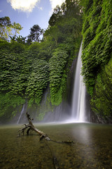 Munduk Waterfall (Pandu Adnyana (thanks for 100K views)) Tags: bali waterfall singaraja bedugul munduk buleleng seririt