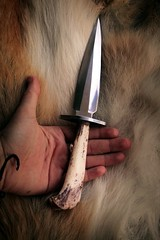 Bobcat Legbone Knife (Little Lioness) Tags: coyote animals cool handmade wildlife knife knives etsy bobcat bigcats boneknife sarahbartell naturepunk