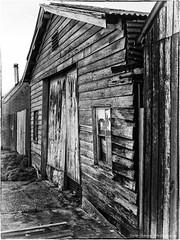 Chudleigh (Sean Savery Photography) Tags: blackandwhite lumix shed australia panasonic tasmania chudleigh gf1 lumixg20f17 seansaveryphotography
