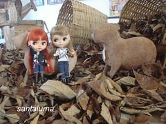 Aisha e Iani na fazenda!!