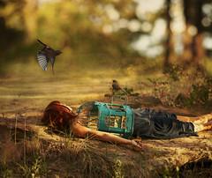 a reckoning that's coming to make something right (Brooke Golightly) Tags: portrait woman selfportrait bird female self flight cage nightingale brookegolightly areckoningthatscomingtomakesomethingright yearningsoul atleastthecreeperdidntruintheshoot butitdoesmakemewishihadabigscarydog