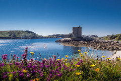 Cromwell's Fort (nosha) Tags: 2012 scillies scilly beautiful beauty castle cromwell em5 island ocean olympus ruin sea shore summer summer2012 tresco water islesofscilly unitedkingdom lightroom olympusem5 olympusm1442mmf3556iir islesofscillyunitedkingdom nosha