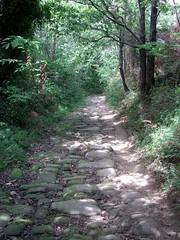 Sur de chemin de Zarautz (Guipuscoa) (Yvette Gauthier) Tags: chemin caminodesantiago randonne zarautz plerinage saintjacquesdecompostelle guipuscoa chemindunord cheminprimitif