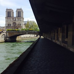 2 mei 2016, Parijs (Gijsbert van der Wal) Tags: paris seine notredame