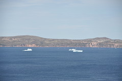 We had been told about icebergs in that area, and indeed, here they are! (oldandsolo) Tags: seascape canada nfl iceberg floatingice coastalroad coastaltown localhistory baydeverde oceanroad icemountain coastaldrive coastalscenery easterncanada newfoundlandandlabrador icechunks baccalieutrail explorertrail breakingiceberg