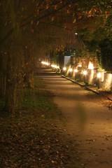 20151128-Japan-0084 (FiferJanis) Tags: stella japan golden alley kyoto pavilion riverwalk pontocho gosho kondo