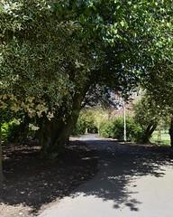 Howard Park, Kilmarnock. Shady Walk. (Phineas Redux) Tags: scotland kilmarnock ayrshire publicparks ayrshirescenes howardparkkilmarnock