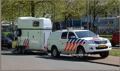 Dutch Police Toyota Hilux. (NikonDirk) Tags: horse holland netherlands dutch foto cops den nederland police haaglanden have national agency cop mounted toyota haag levende unit politie hilux landelijke eenheid hgl hulpverlening nikondirk vd387p vd814n vs165t