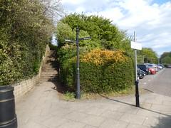 Steps and Petherham Bridge Car-park, 2016 May 12 (Dunnock_D) Tags: road street uk blue trees sky white sign clouds scotland unitedkingdom fife britain pavement steps bin hedge standrews signpost carpark