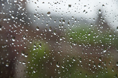 June 19th 2016 - Project 366 (Richard Amor Allan) Tags: window rain weather raindrops summertime shallowdof project366