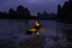 Cormorant fishing to Xing Ping. (Massetti Fabrizio) Tags: china sunset sun sunlight color night river nikon fishermen guilin cina guangxi nikond4s