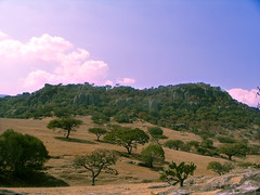 El Pedregoso (Eunice.Quees) Tags: sky mountain tree green rock landscape photo heaven foto paisaje paseo photograph montaas piedras fotografa