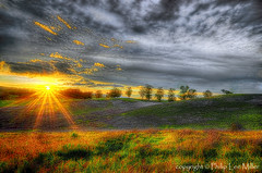 Helios (explored) (philipleemiller) Tags: california sunset nature grass landscape nikon trails hdr rollinghills eucalyptustrees overcastclouds explored topazclean d7000 magicunicornverybest topazdetail fleursetpaysages flickrstruereflection1 flickrstruereflection2 flickrstruereflection3 trueexcellence1