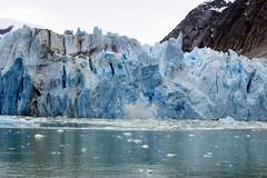 Dawes Glacier 2402 (annekuolukito) Tags: cruise alaska arms arm glacier juneau 2012 dawes endicott dawesglacier endicottarm endicottarms