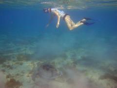 Marsa Mubarak (12) (Natasha Sytova) Tags: underwater redsea egypt marsa alam marsaalam marsamubarak