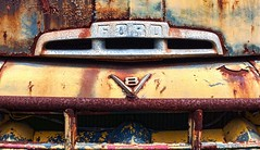 V8 Ford (Sky Noir) Tags: old usa ford truck emblem crust photography us rust unitedstatesofamerica rusty retro transportation nostalgic hood americana weathered carparts crusty v8 patina f6 skynoir
